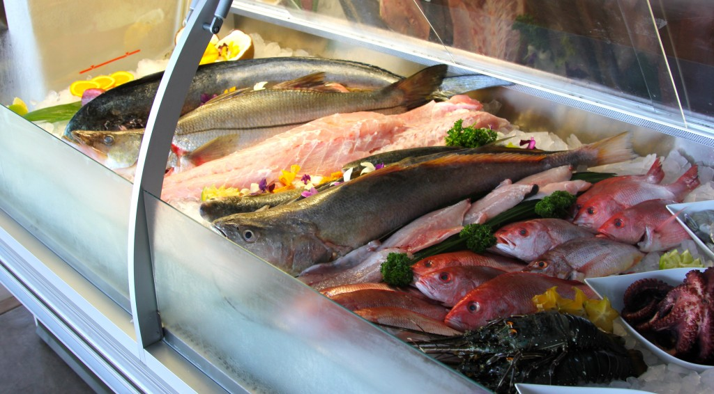 Pangas Fish Market