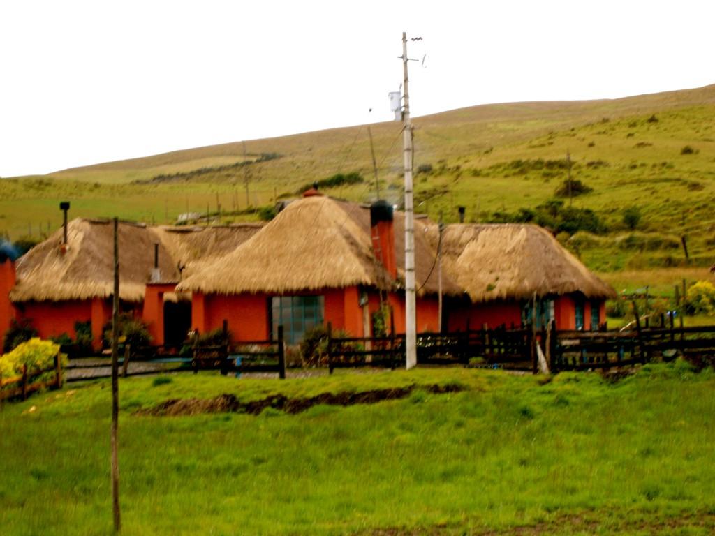 Rancho Ecuador by Suzanna Lourie