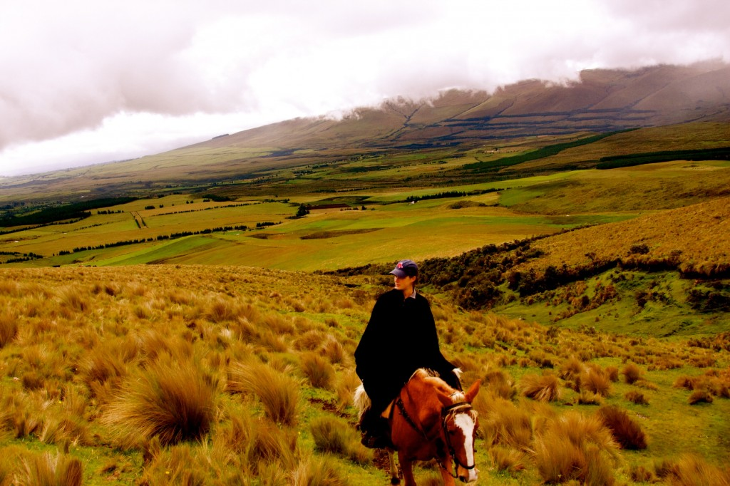 Riding High Ecuador by Suzanna Lourie