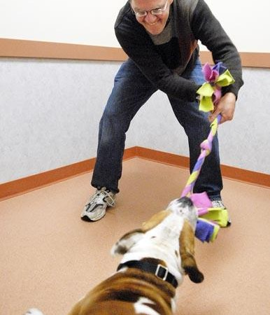 Picture of Joe Mazurkivich